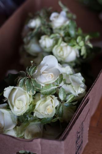 wedding-gallery217