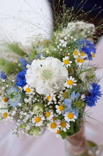 wedding-gallery229